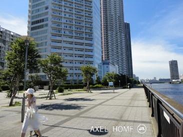 アップルタワー東京キャナルコート 周辺道路
